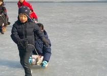 얼음썰매타기